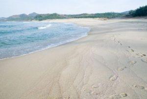 京都府京丹後市の「琴ヶ浜」