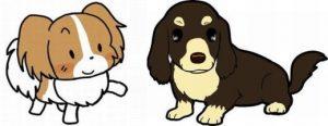 犬の健康診断1