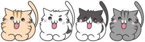 ネコ_ごきげん_白