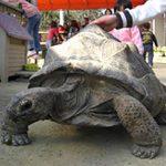 動物と遊ぼぅ 渋川動物公園