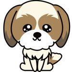 愛犬のしつけは「ほめてのばす」が一番