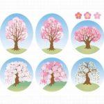 桜、梅、桃の違いを見分けましょう