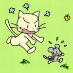 ネコがネズミを追いかける訳